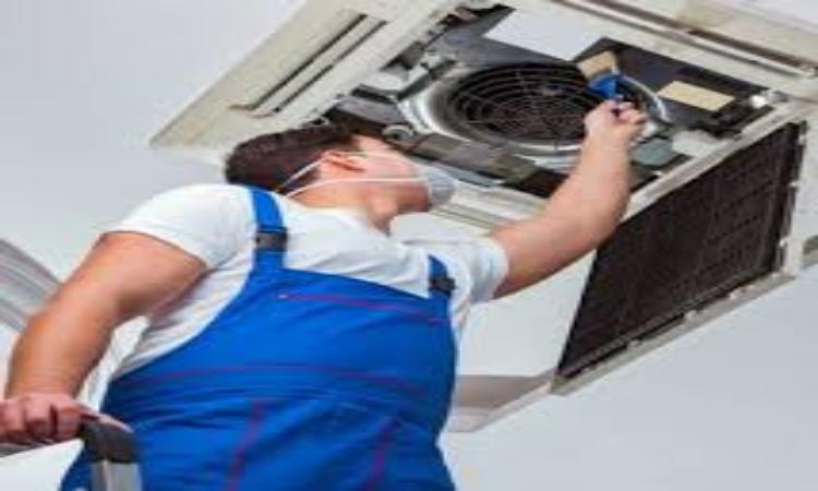 أهمية إزالة العفن من مجاري الهواء